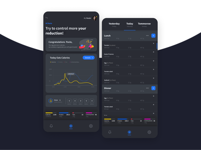 FitBurn Calories APP waterfall charts calories illustration concept user experience mobile app app userexperiance product ui ux design