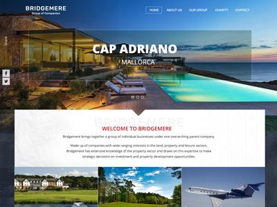 Web Design  ui design parent company website luxury web design