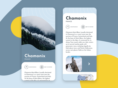 Dribbble Shot france chamonix travel sketch flat app ux typography branding vector ui design