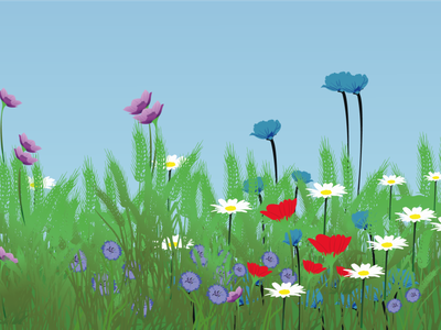 Flowers in a field Illustration nature illustration landscape design landscape illustration lanscape cartoon character character design graphic design creative design design vector branding illustration