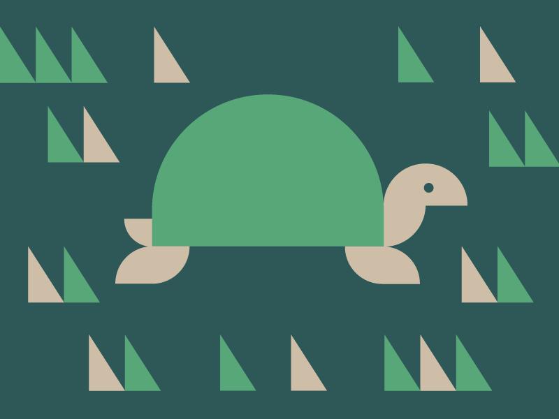 Turtle animal geometry triangle geometric illustration turtle