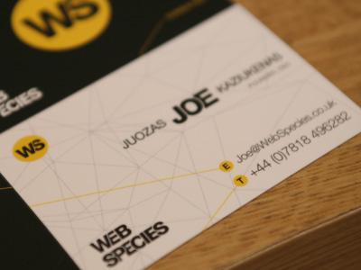 Web Species brand identity identity business cards brand web minimalism