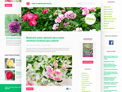 WIP WordPress Theme web web design photoshop minimal wordpress blog logo
