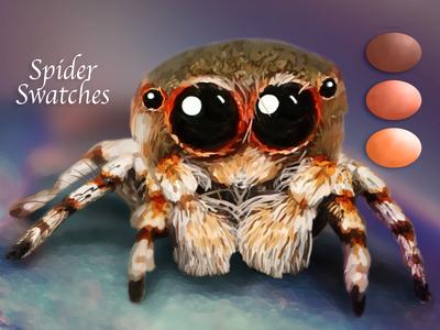 Spider Swatches