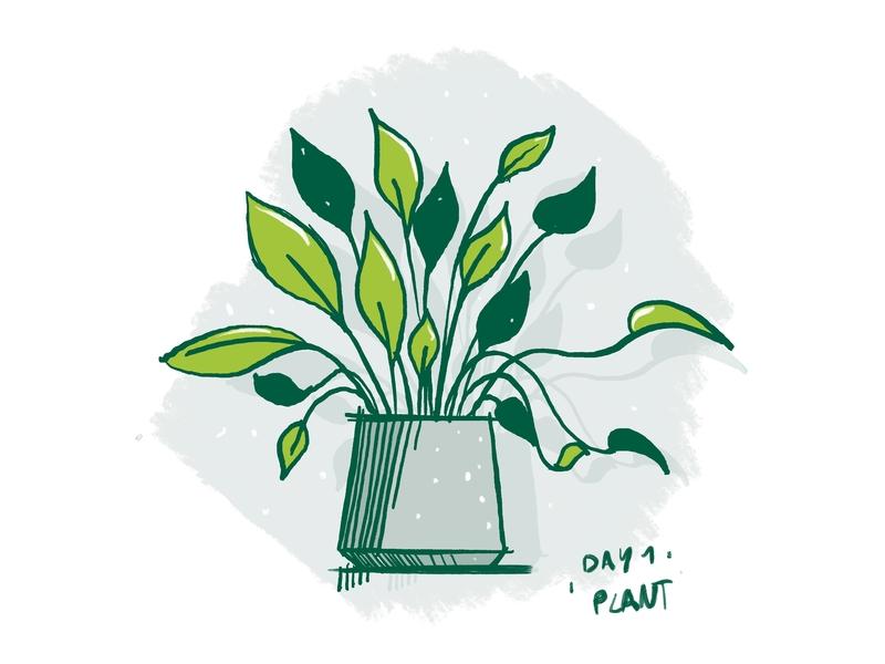 Procreate sketching practise: Day 1 procreate plant