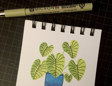 Day 4: philodendron