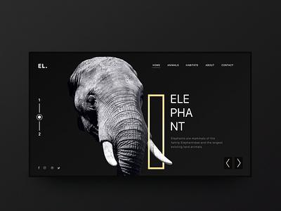Elephant Minimal Inspiration Web Design user interface black minimal elephant minimal web design minimal landing page minimalism minimal uxui uiux ui design uxdesign ux uitrends uidesign interactiondesign designinspiration web ui interaction inspiration