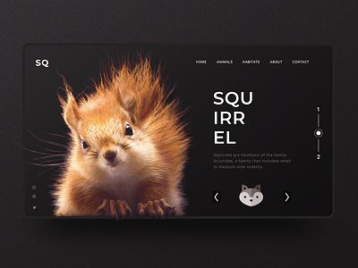 Squirrel Inspiration Web Design uxdesign ux uitrends uidesign interactiondesign ui designinspiration web interaction inspiration
