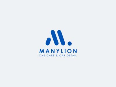 Manylion   Car care & car detail