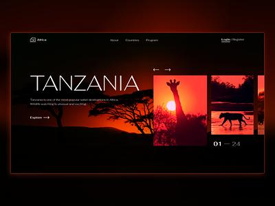 Tanzania animals africa concept minimal color web design ux ui