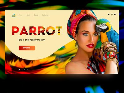 Parrot parrot beautiful website minimal creative design color web ui design concept