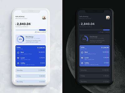 Daily cost ui app icon design