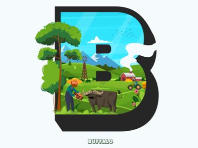 B - Buffalo