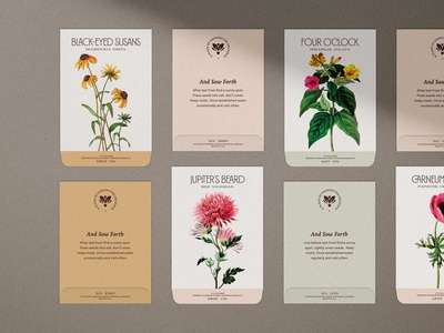 Cliffrose Seed Packets typography brand identity branding cliffrose zion national park hotel packaging flowers