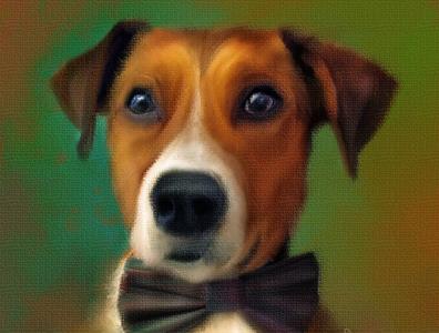 Digital Portrait_Toby animalportrait dogportraits