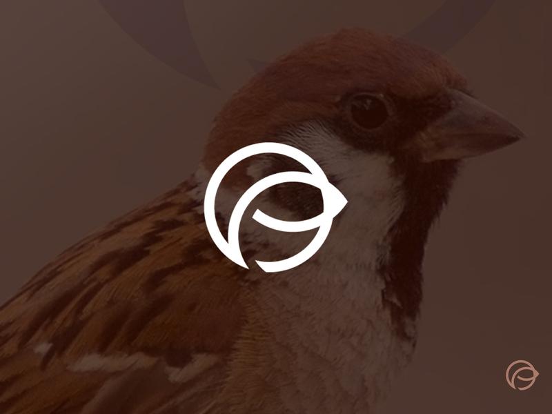 The sparrow icon vector minimalistic logo symbol design logo mark graphic  design design brand and identity