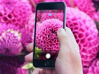 iOS Camera Tweak