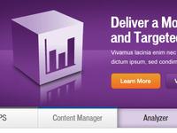 Iapps Homepage Analyzer