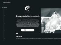 651 Studio Branding and Website