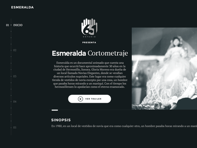 651 Studio Branding and Website web logo design ui