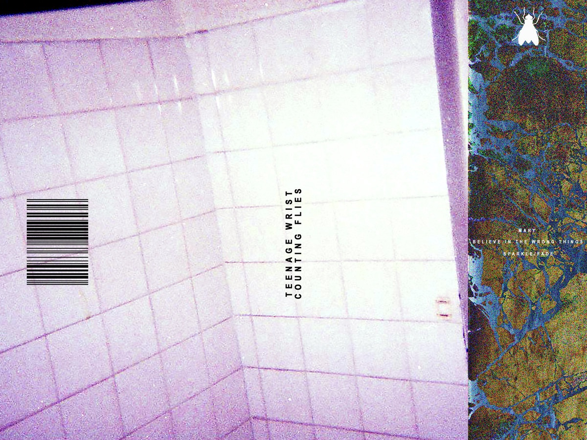 "Teenage Wrist - ""Counting Flies"" EP bands branding music cover album covers album cover art music design"