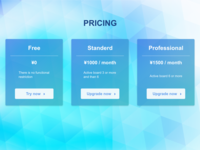 Daily Ui  030 Pricing
