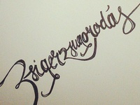 Ugly words look nicer with handlettering:)