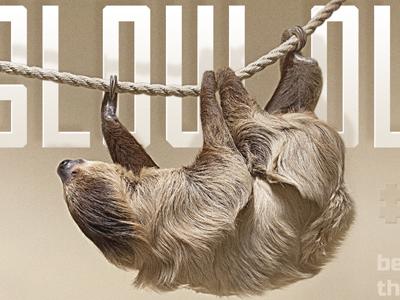 Slow Dribbble sloth slow