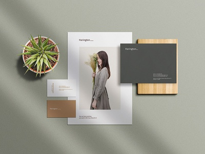 Free Business Stationery Mockup PSD
