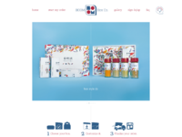Box co. website design