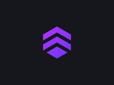 Hexagon Logo Design 2