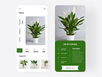 Plant Shop App UI