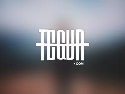 tegvr.com logotype logo design logo