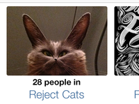 Reject Cats