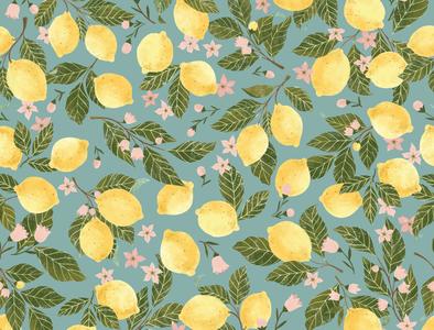 Kitchen Lemons fruit yellow lemon branches lemon flowers lemonade citrus drawing kitchen lemons lemons lemon illustration