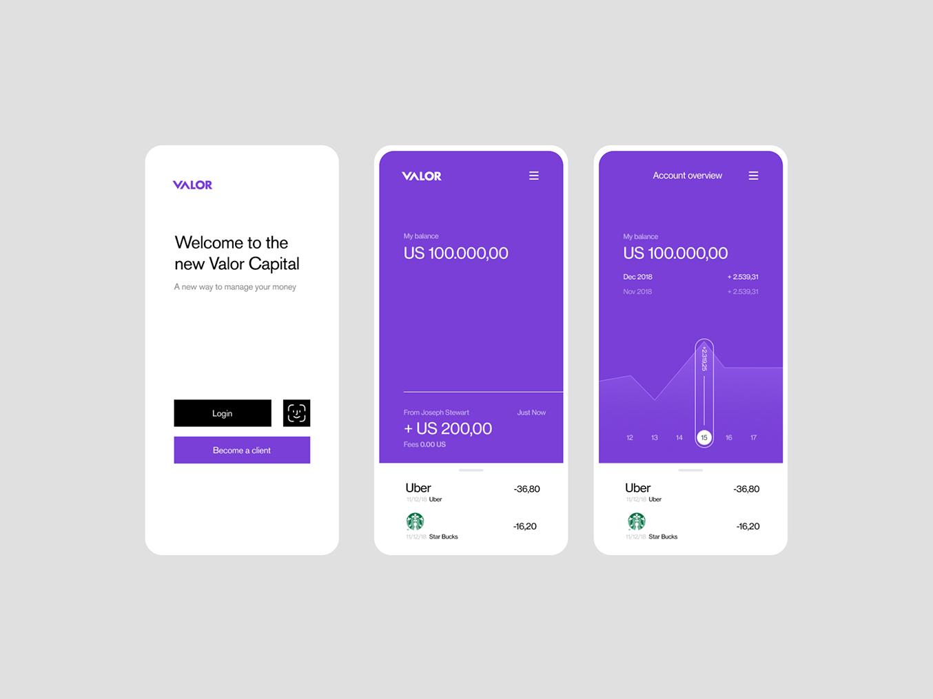 Valor Capital product design ui  ux logo interface design ux ui