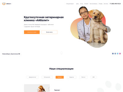 The concept of the website of the veterinary clinic medical doctor veterinarian ui design web