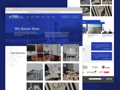 TMDL Website Design ux ui web design design