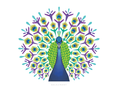 Abstract Peacock Illustration abstract design vector adobe illustrator illustration peacock abstract design