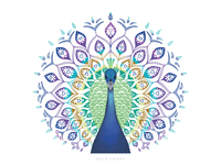 Peacock illustration with motifs