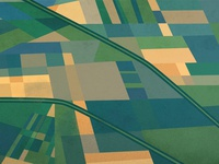 Farmland pattern