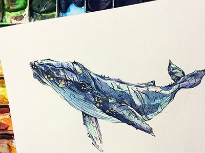 Humpback illustration whale design drawing pen drawing watercolor painting wowsujina sujinlee