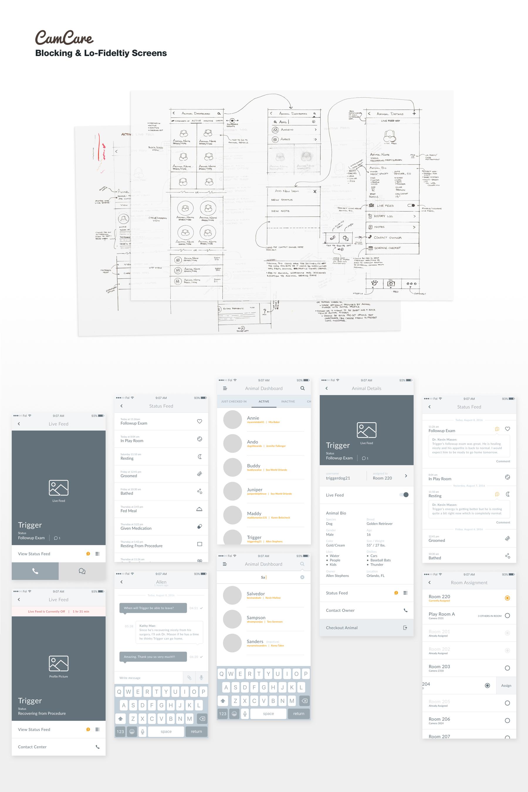 Camcare app sketch blocking img