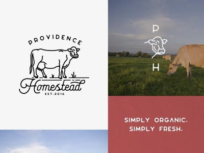 Providence Homestead - Identity fresh organic eggs cheese produce milking jersey cow ranch farm logo identity dairy milk homestead providence