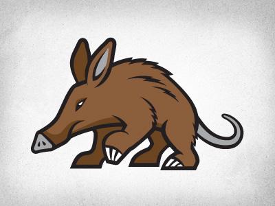 Aardvark 01
