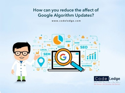How can you reduce the affect of Google Algorithm Updates
