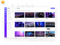 Video Manager Light Version