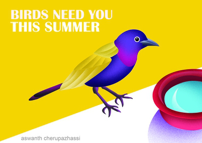 save bird in summer
