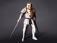 Paladin Armor concept