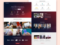 BSX - Homepage Design